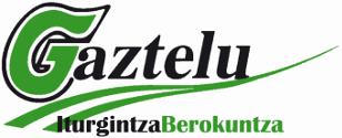 Gaztelu Iturgintza. Logotipoa